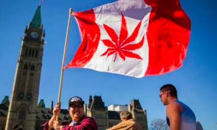 正式宣布大麻合法化,大麻产业将成加拿大重要经济支柱?