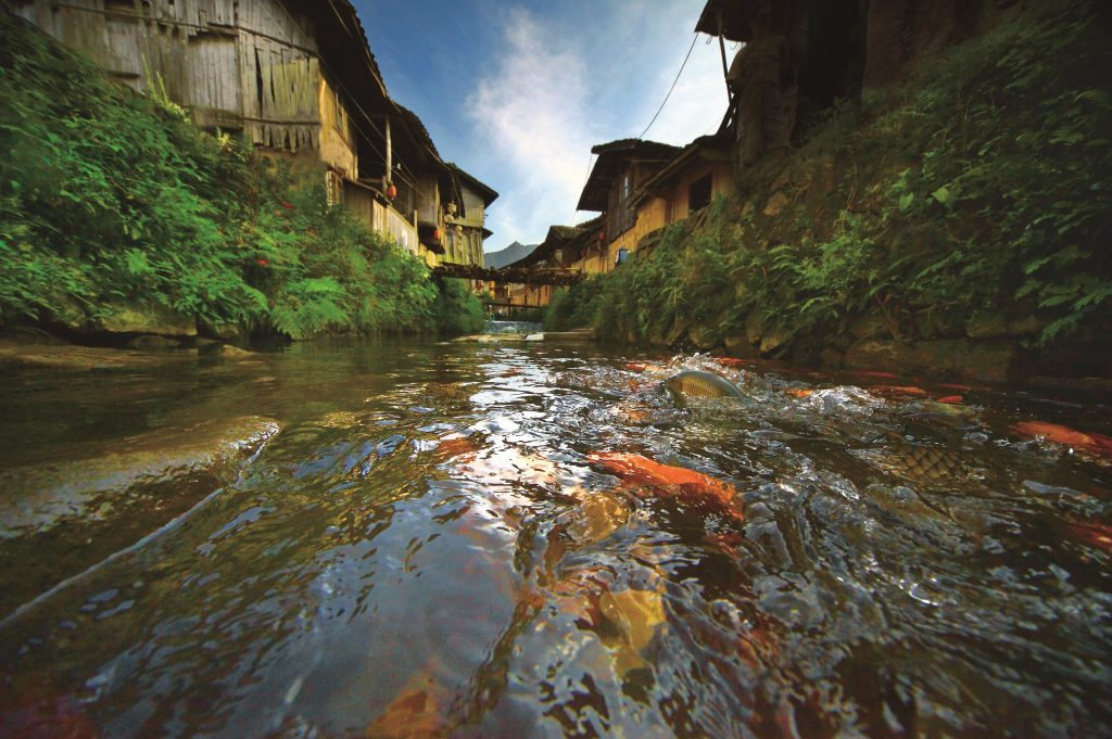 鲤鱼溪——张源 摄