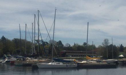 湖畔Ramada一只烤全羊的呼唤——多伦多媒体同仁郊游记
