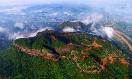 广西最大侨乡玉林打造四大千亿产业集群,行走中国-广西行,40余家著名海外华文媒体高层走进壮乡系列报道(十六)