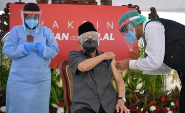 印尼77岁副总统接种中国疫苗 打完后称感觉很好